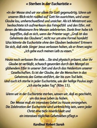 Kardinal Robert Sarah | POSchenker | Seite 3