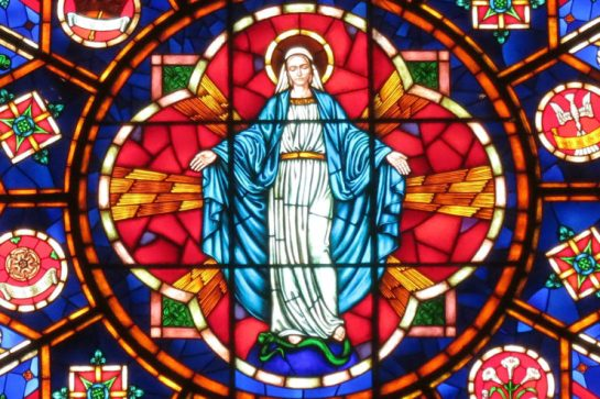 saint_nicholas_catholic_church_zanesville_ohio_-_stained_glass_rose_window_immaculate_conception-740x493